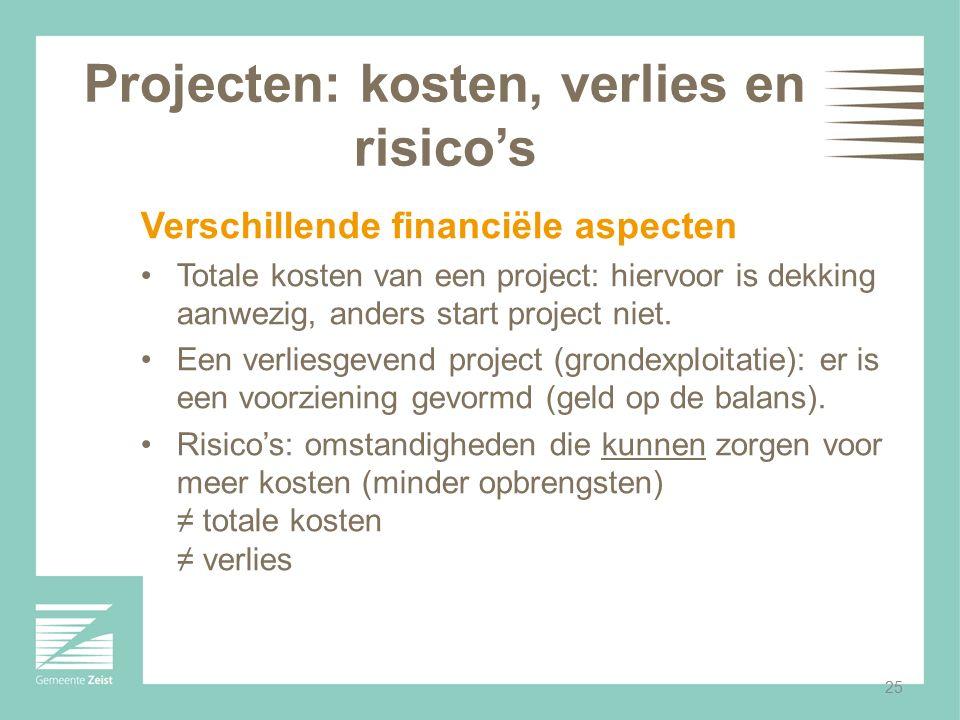 Projecten: kosten, verlies en risico's