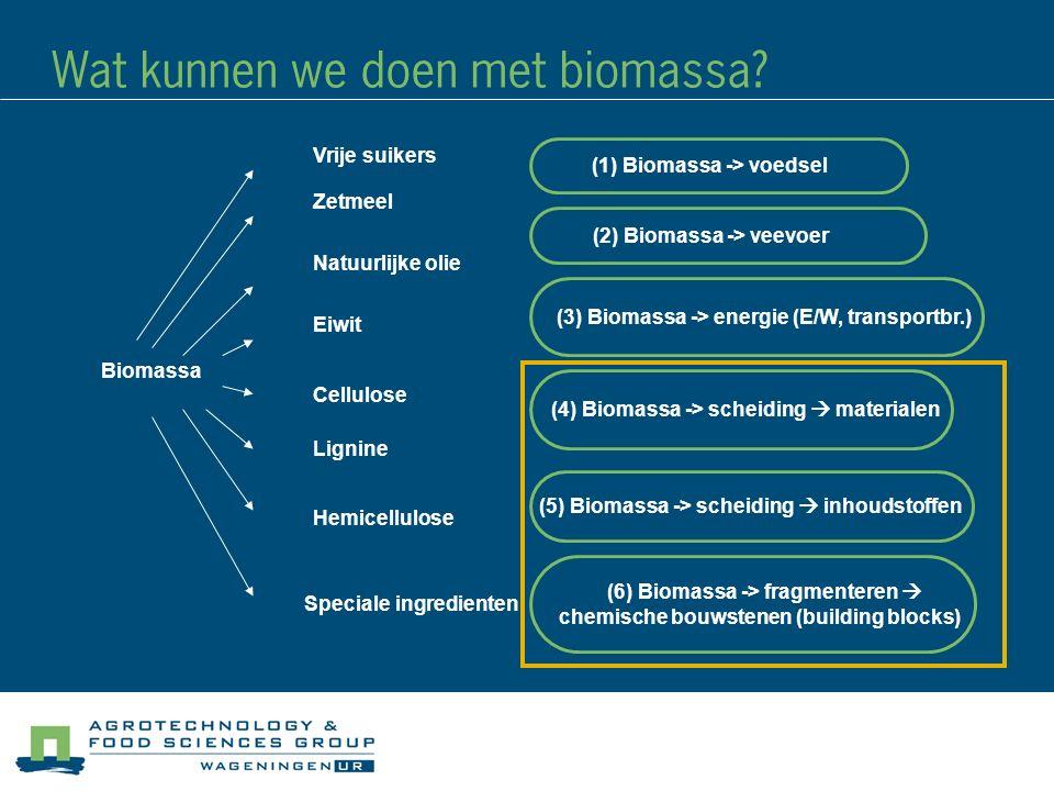 Wat kunnen we doen met biomassa
