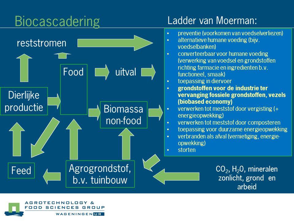 Biocascadering Ladder van Moerman: reststromen Food uitval Dierlijke