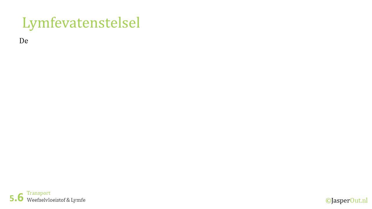 Lymfevatenstelsel 5.6 De ©JasperOut.nl Transport