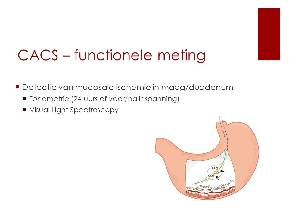 CACS – functionele meting