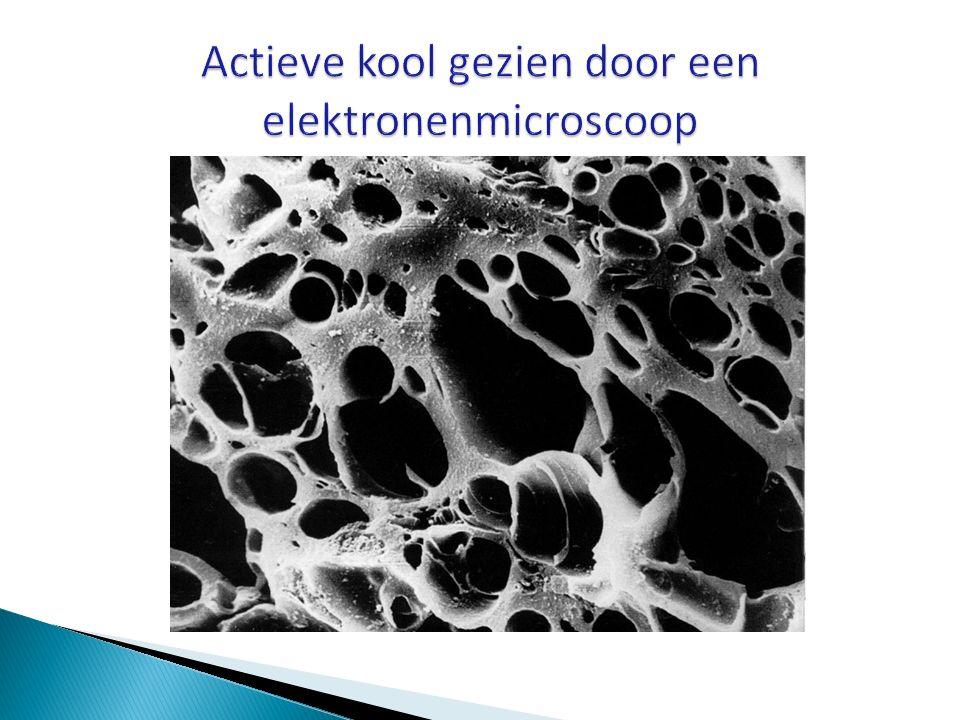 Actieve kool gezien door een elektronenmicroscoop