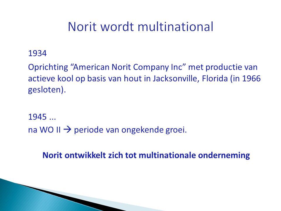 Norit wordt multinational