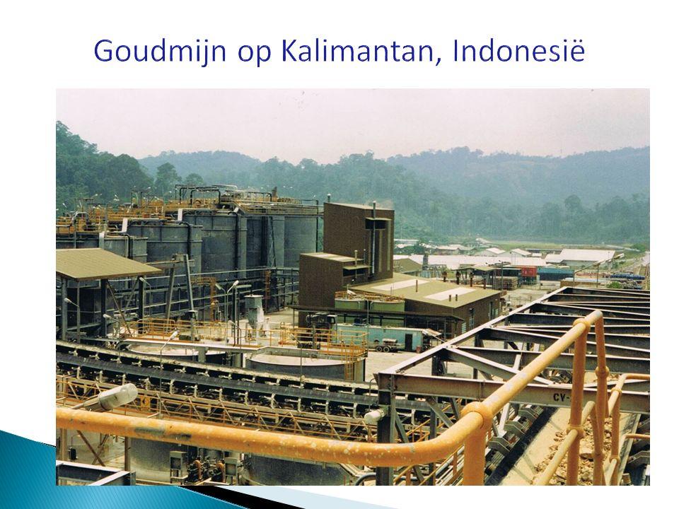 Goudmijn op Kalimantan, Indonesië