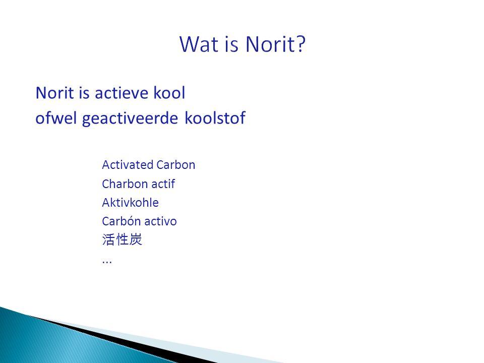 Wat is Norit Norit is actieve kool ofwel geactiveerde koolstof