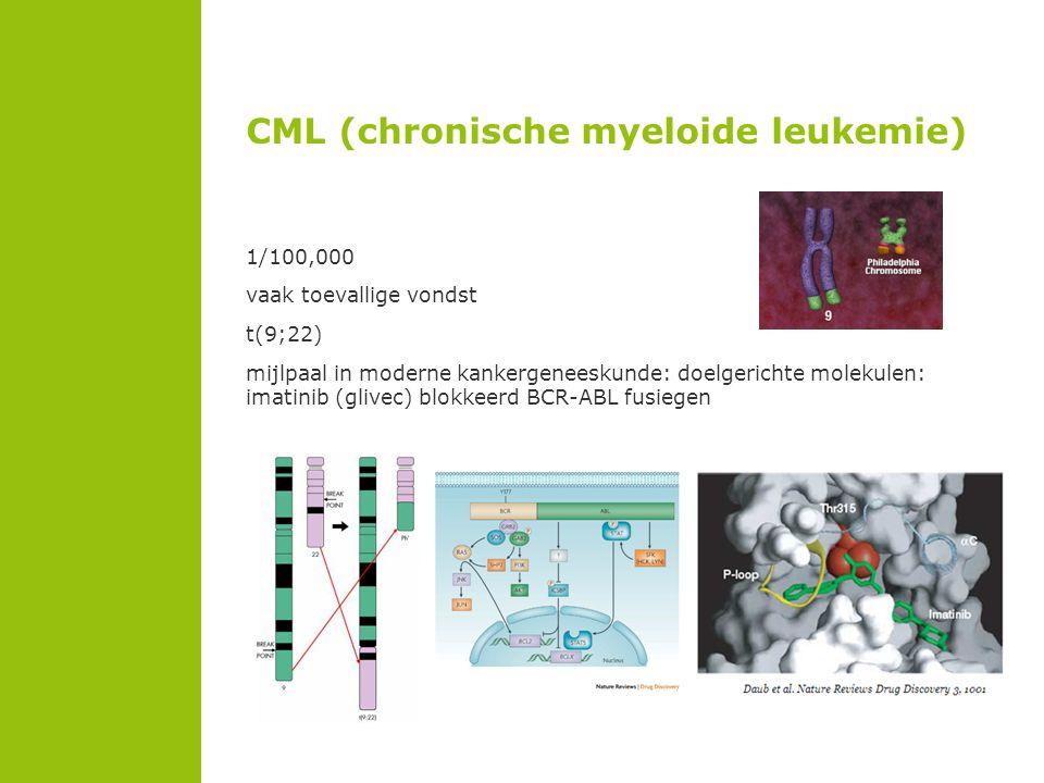 CML (chronische myeloide leukemie)