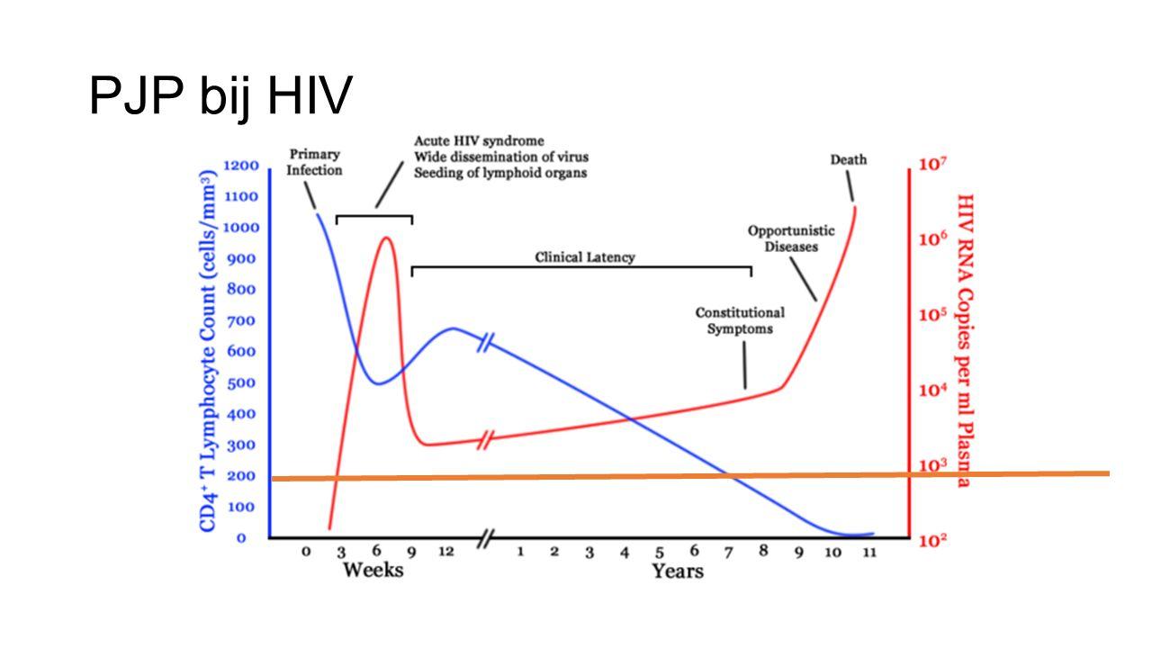 PJP bij HIV