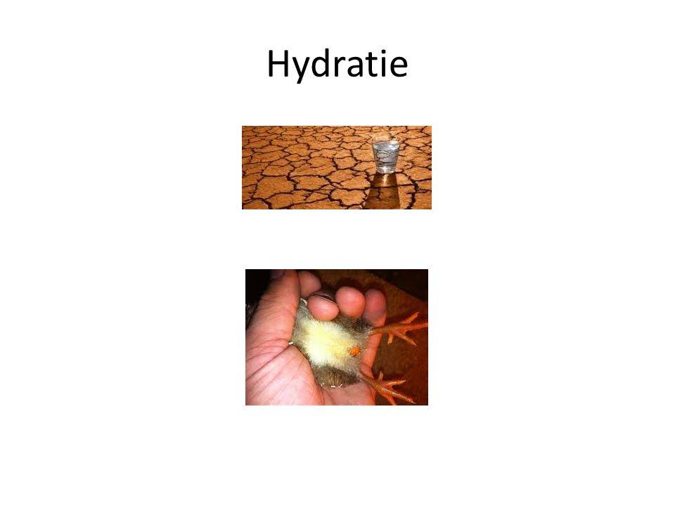 Hydratie