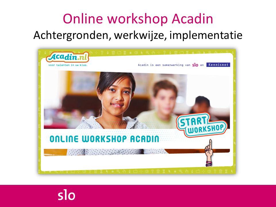 Online workshop Acadin Achtergronden, werkwijze, implementatie