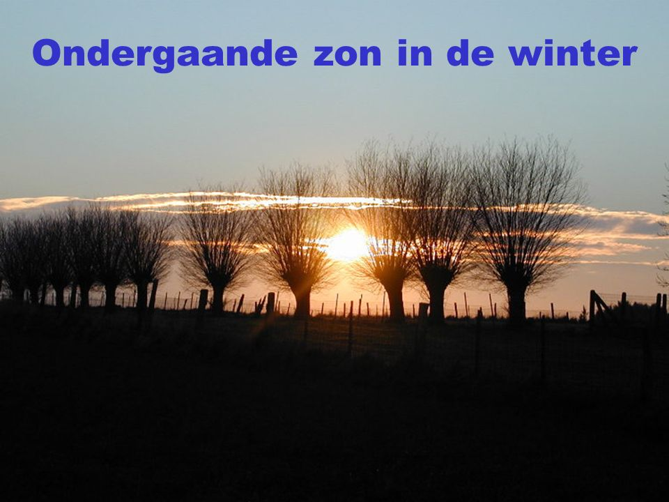 Ondergaande zon in de winter