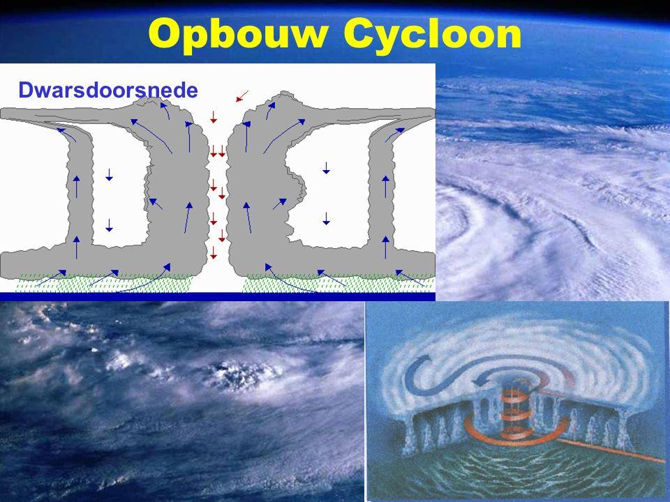 Opbouw Cycloon Dwarsdoorsnede