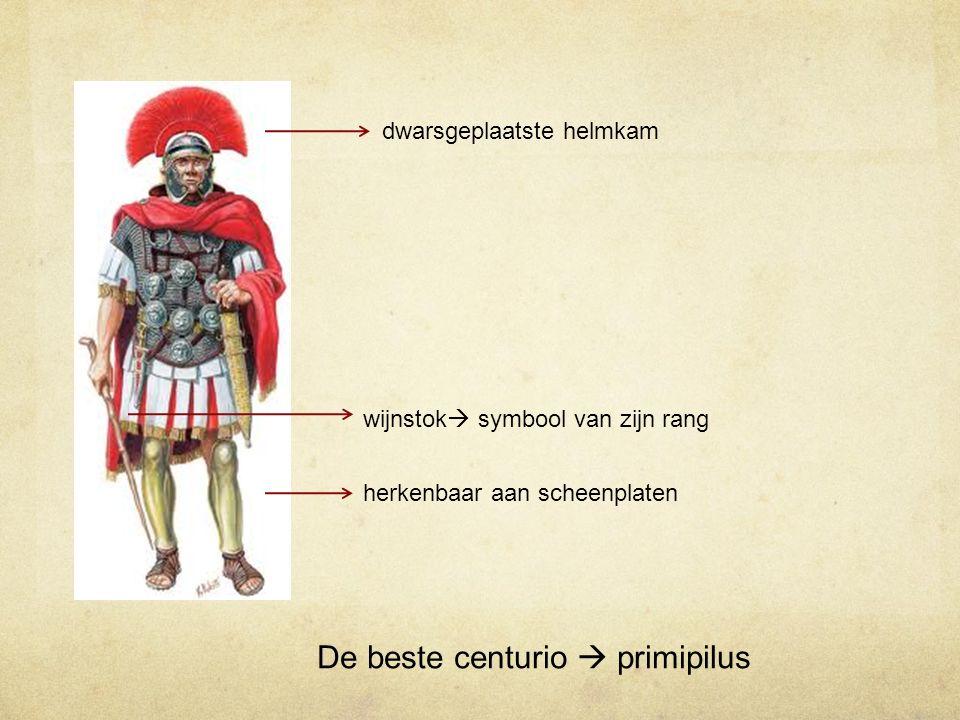 De beste centurio  primipilus