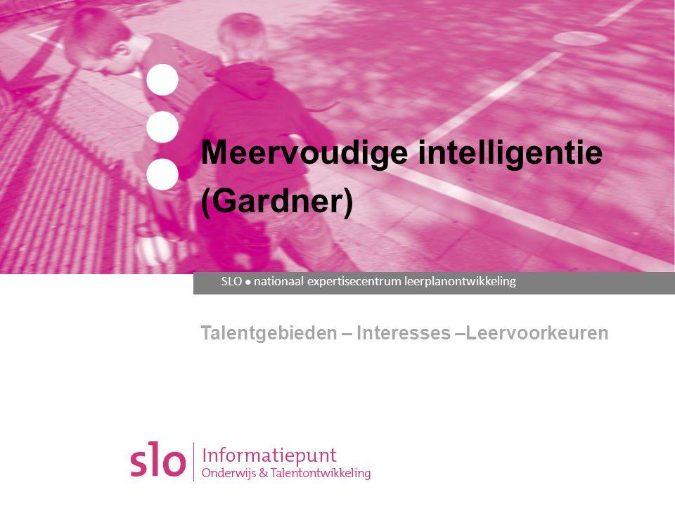 meervoudige intelligentie mindmap