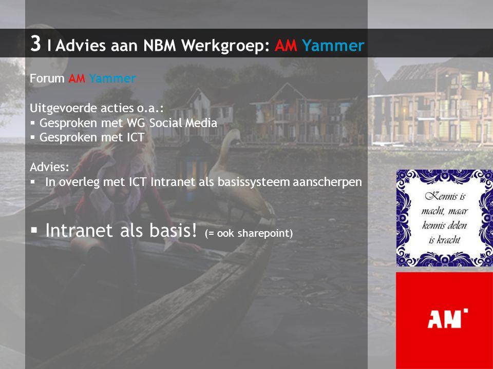 3 I Advies aan NBM Werkgroep: AM Yammer