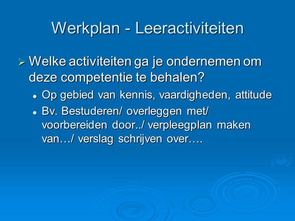 Werkplan - Leeractiviteiten