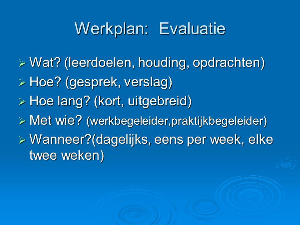 Werkplan: Evaluatie Wat (leerdoelen, houding, opdrachten)