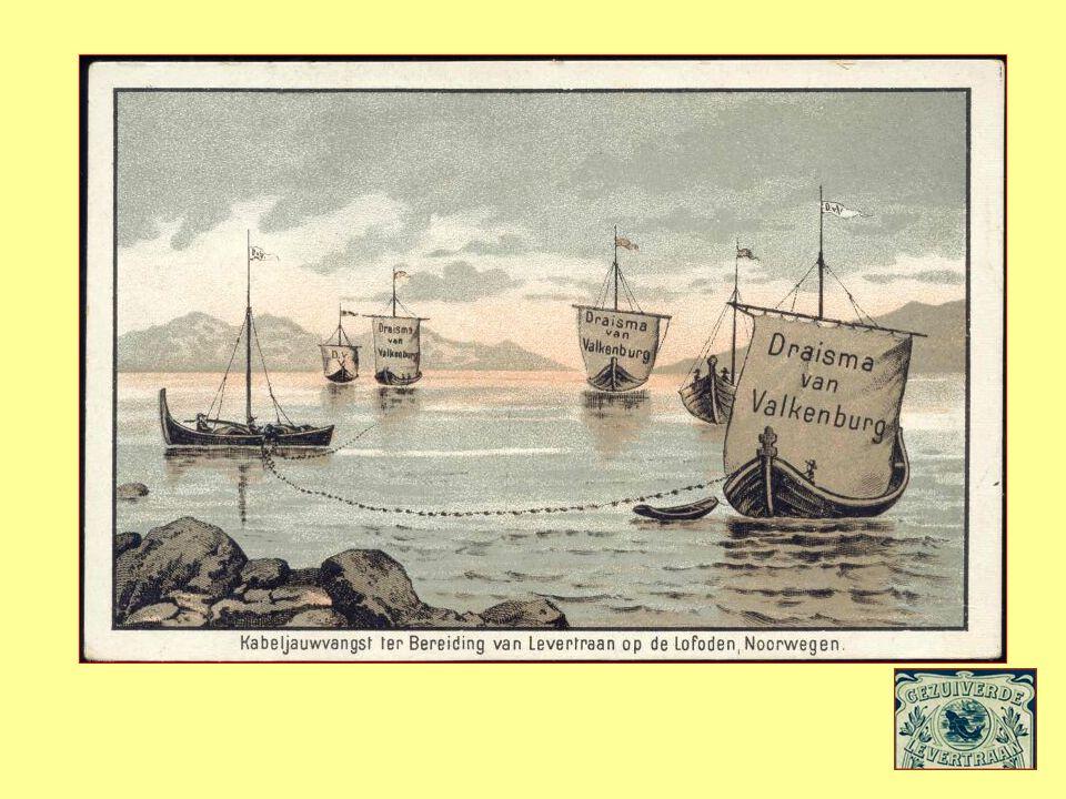 Reclame affiche van Noorse Levertraan