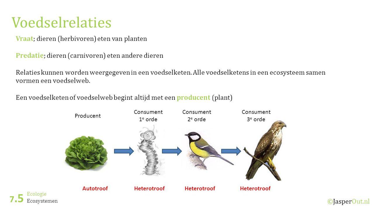 Voedselrelaties 7.5 Vraat; dieren (herbivoren) eten van planten