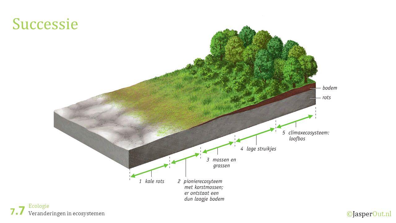 Successie 7.7 Ecologie Veranderingen in ecosystemen ©JasperOut.nl