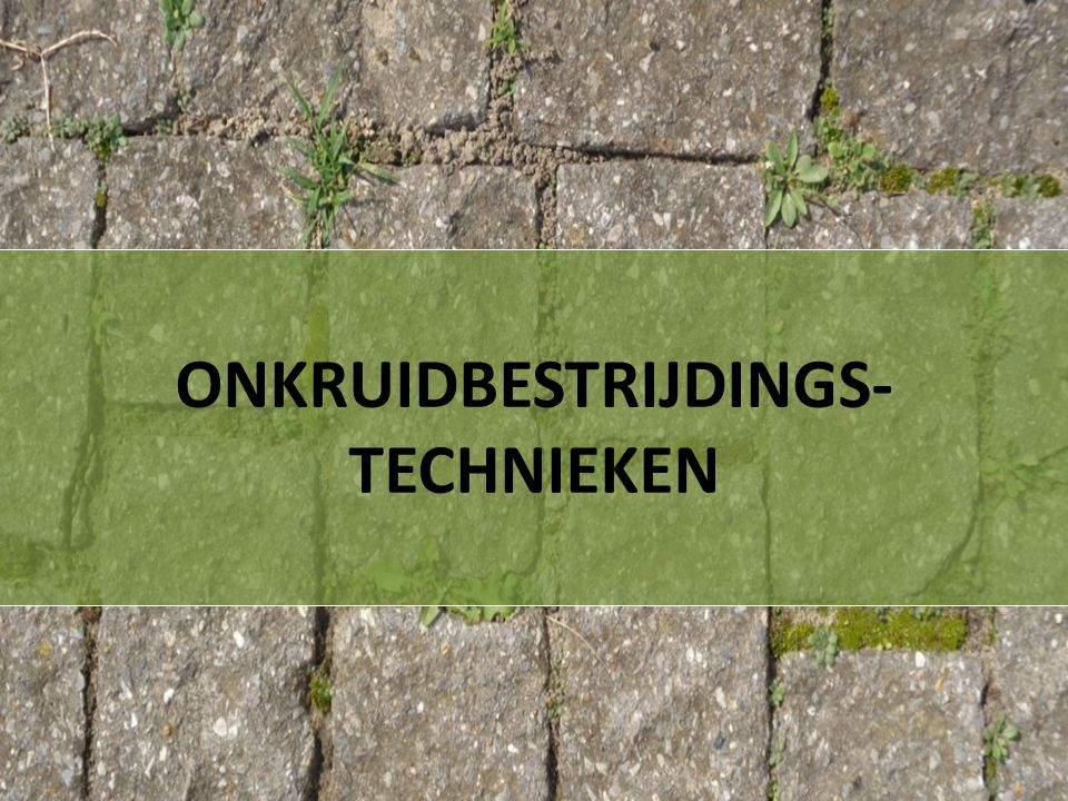 ONKRUIDBESTRIJDINGS-TECHNIEKEN