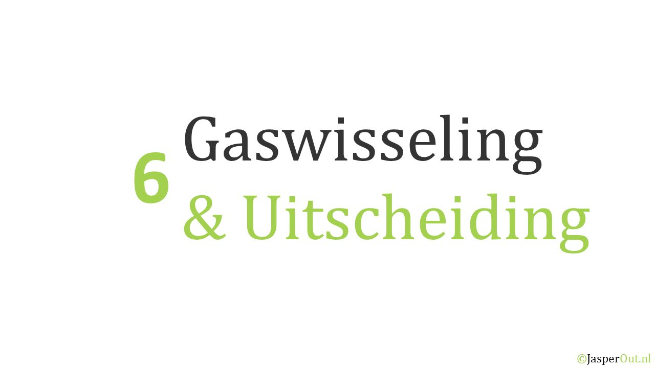 Gaswisseling & Uitscheiding