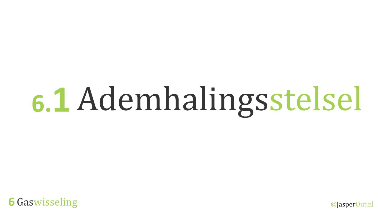 6.1 Ademhalingsstelsel 6 Gaswisseling ©JasperOut.nl