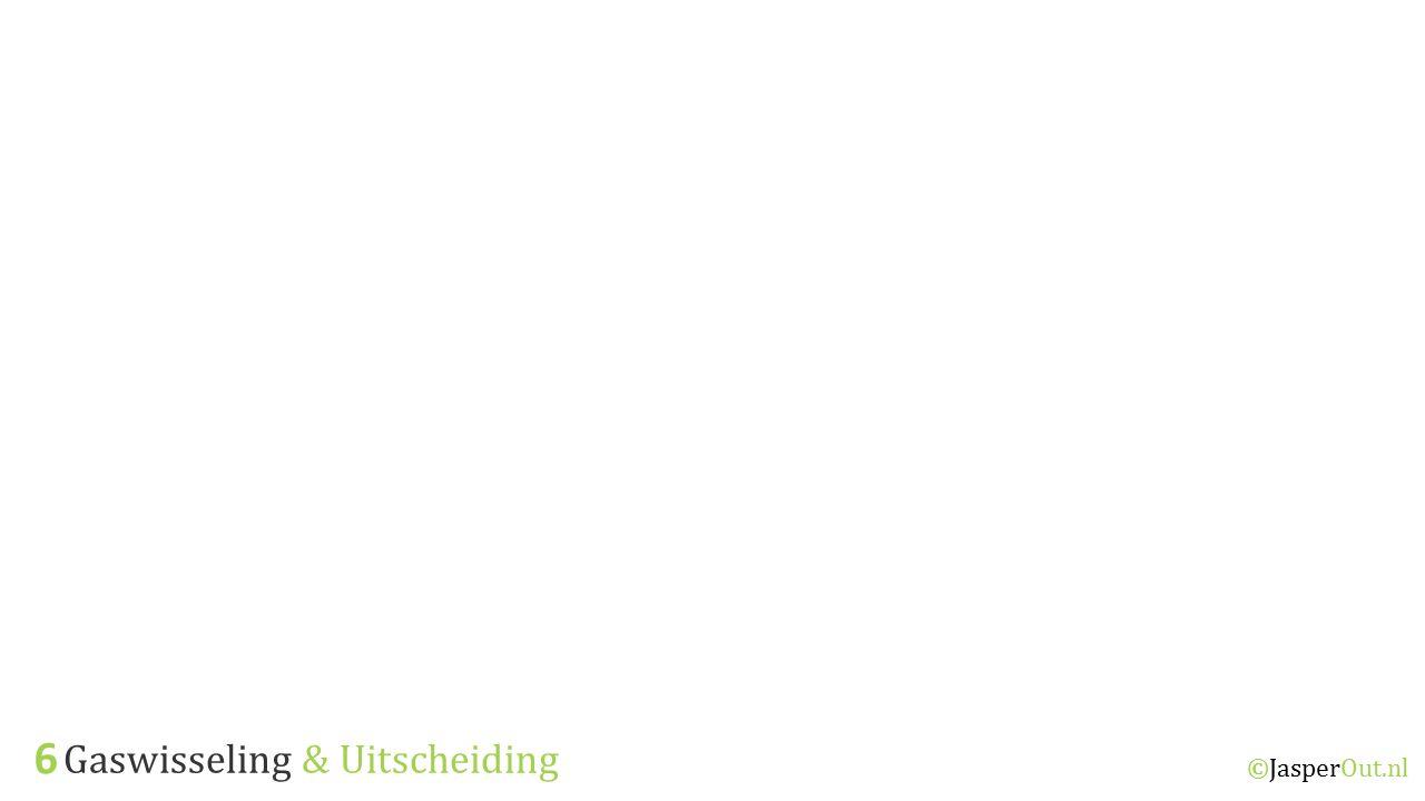 6 Gaswisseling & Uitscheiding ©JasperOut.nl