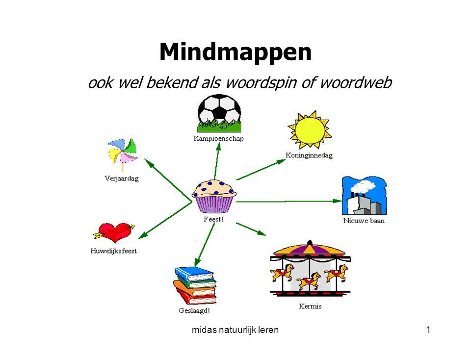 Mindmappen ook wel bekend als woordspin of woordweb