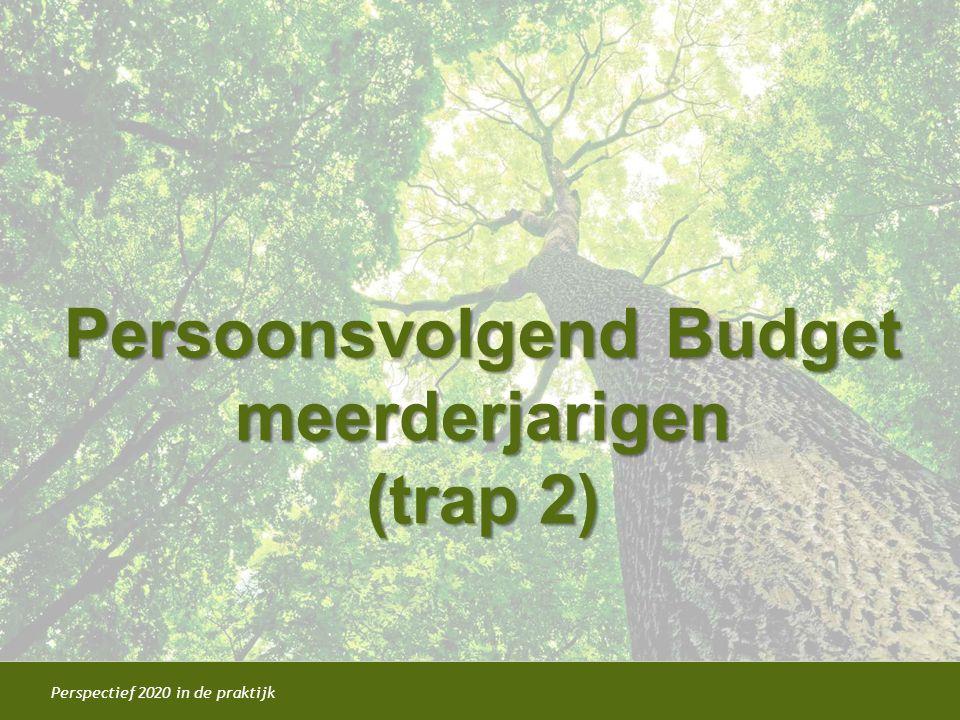 Persoonsvolgend Budget meerderjarigen (trap 2)