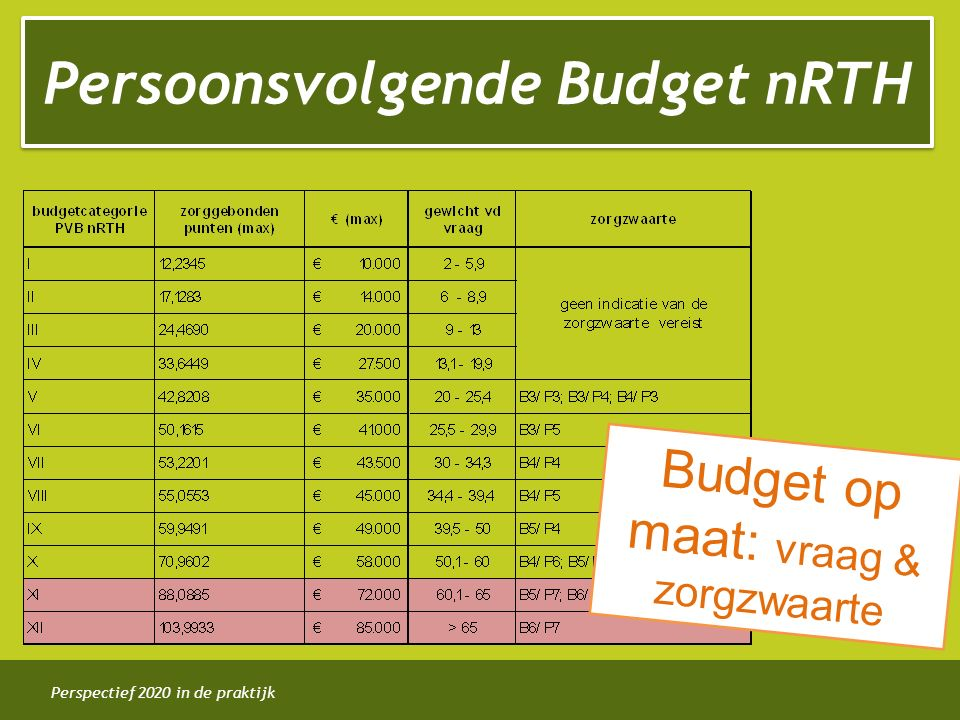 Persoonsvolgende Budget nRTH
