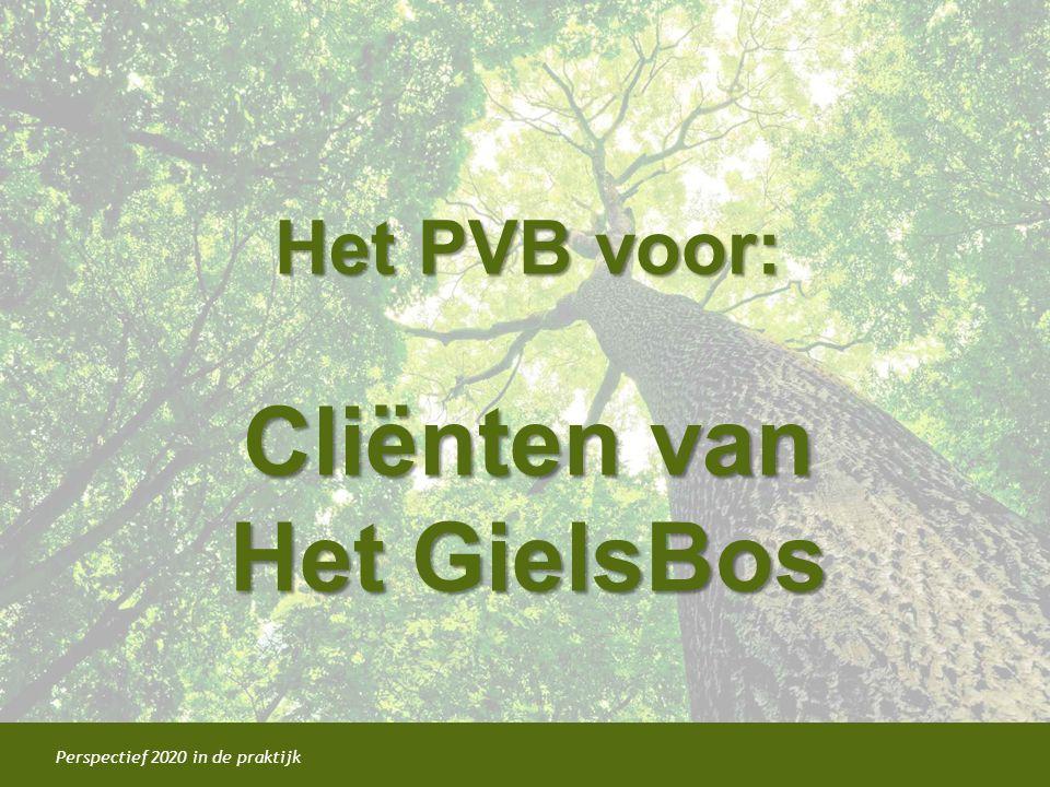 Het PVB voor: Cliënten van Het GielsBos