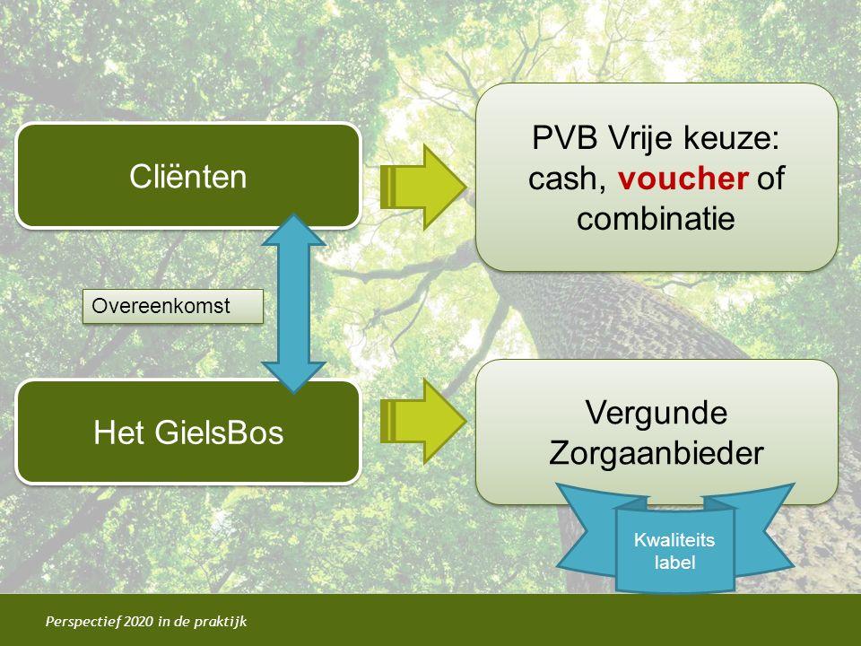 PVB Vrije keuze: cash, voucher of combinatie Cliënten