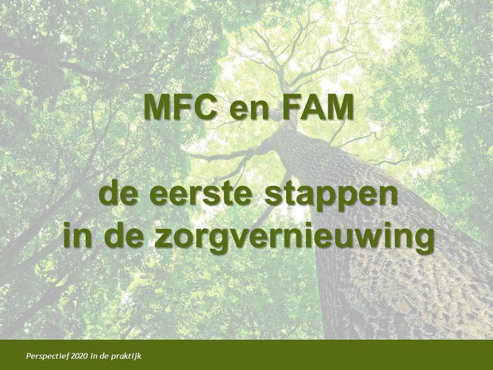 MFC en FAM de eerste stappen in de zorgvernieuwing