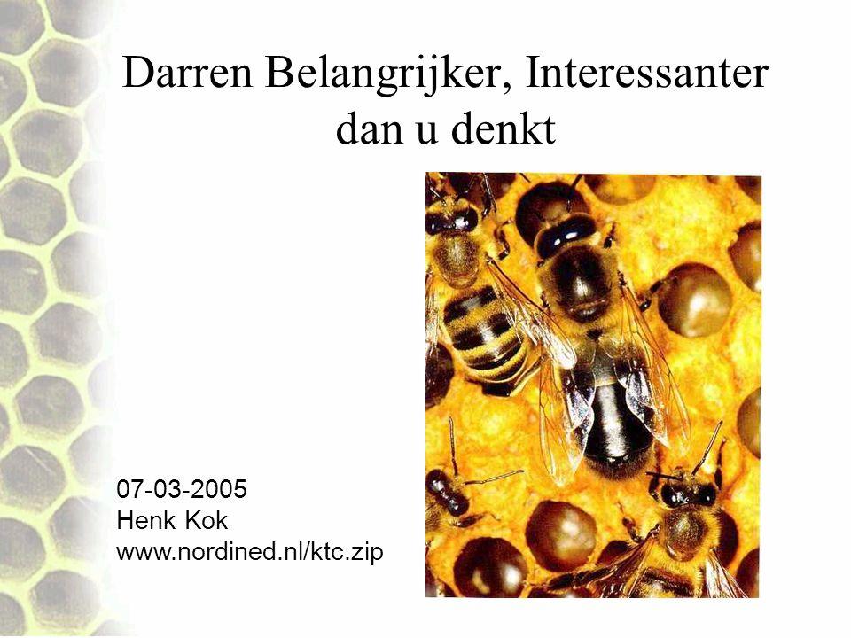 Darren Belangrijker, Interessanter dan u denkt