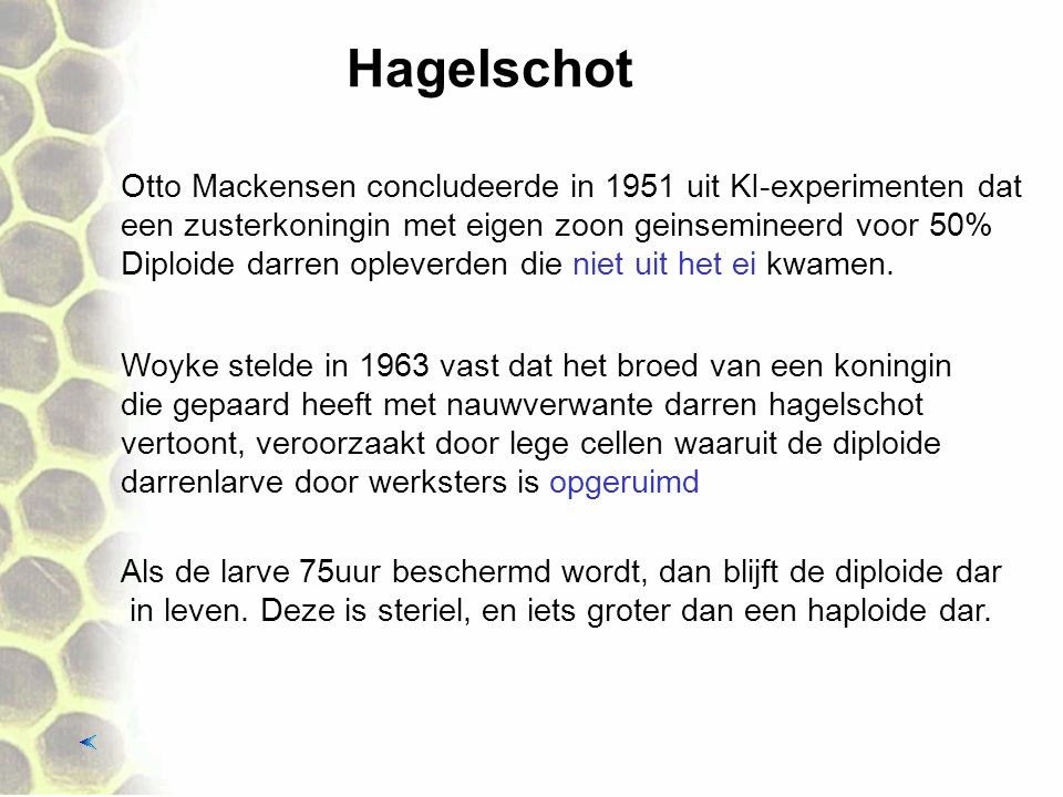 Hagelschot Otto Mackensen concludeerde in 1951 uit KI-experimenten dat