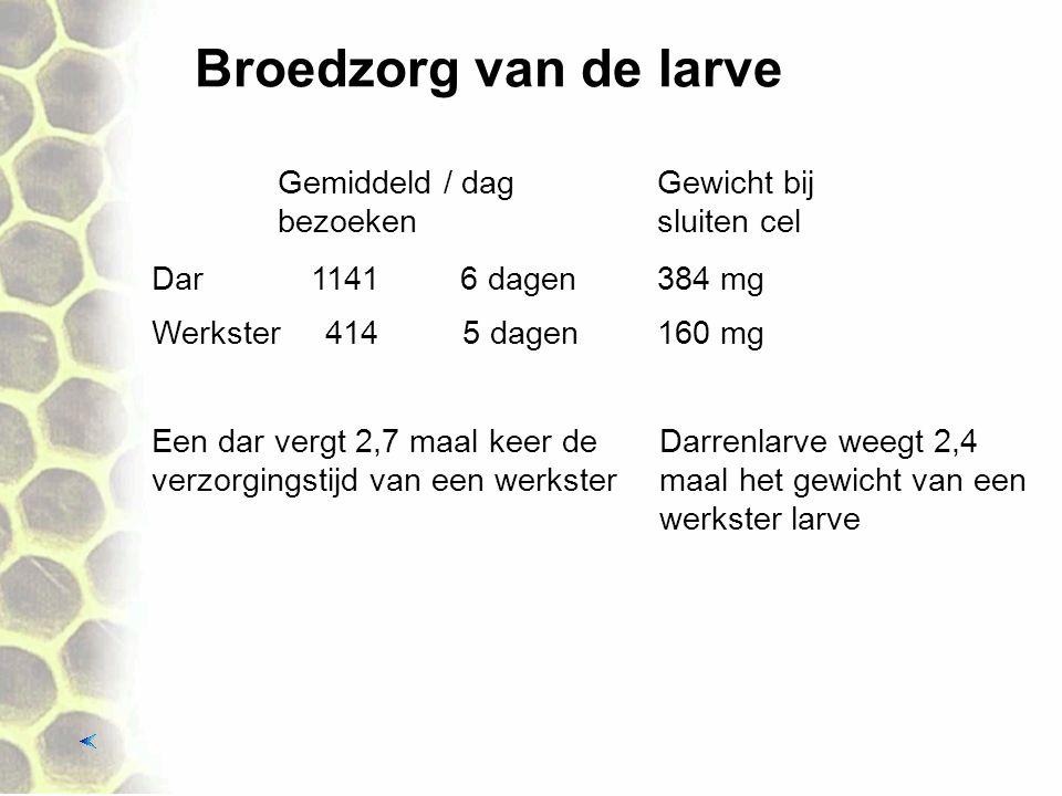 Broedzorg van de larve Gemiddeld / dag bezoeken Gewicht bij