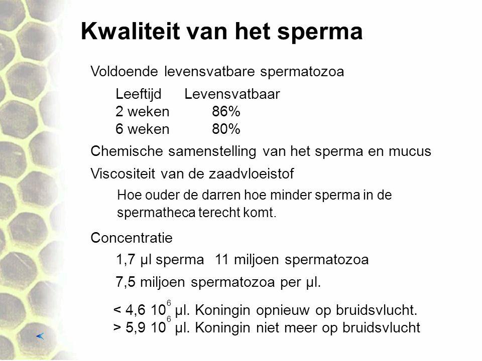 Kwaliteit van het sperma