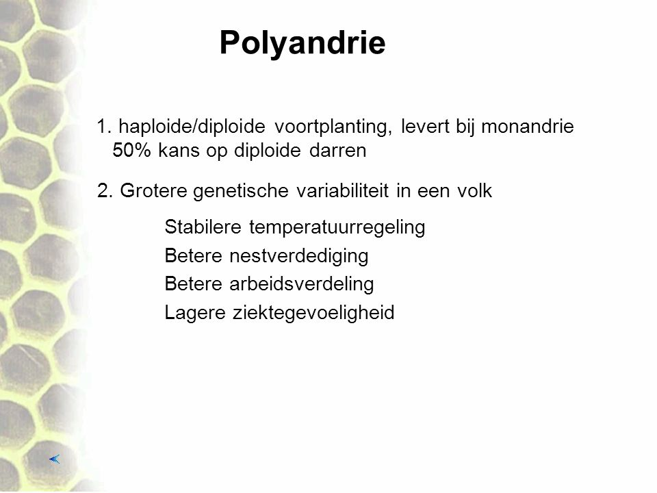 Polyandrie 1. haploide/diploide voortplanting, levert bij monandrie