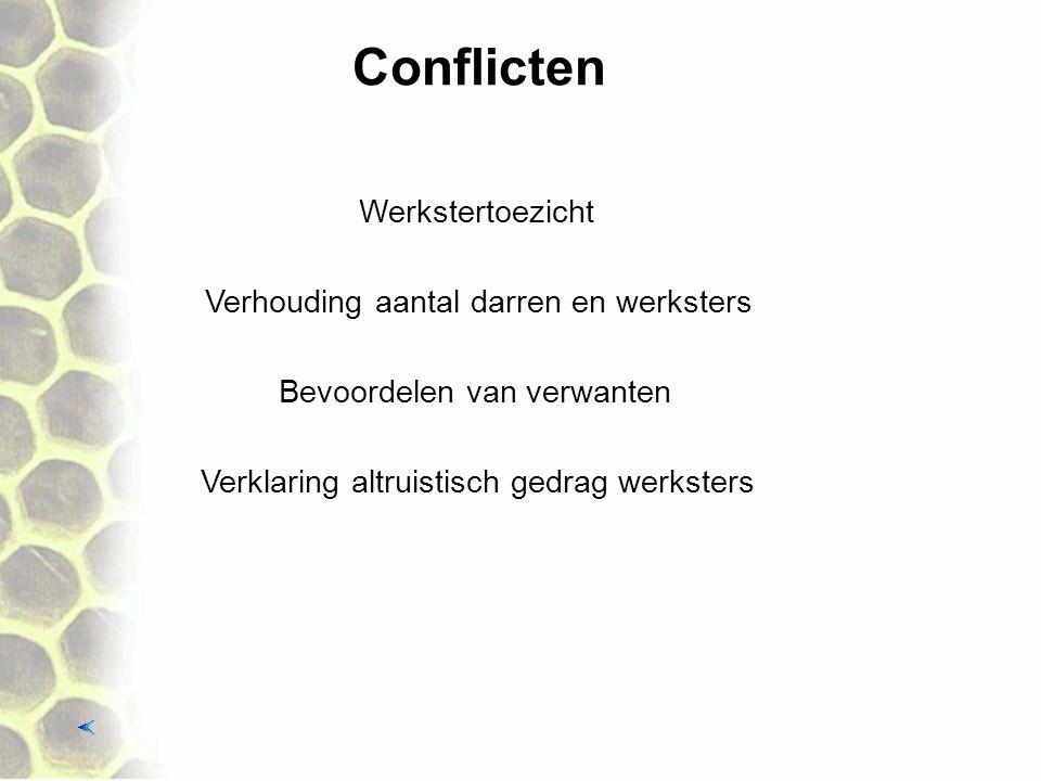 Conflicten Werkstertoezicht Verhouding aantal darren en werksters
