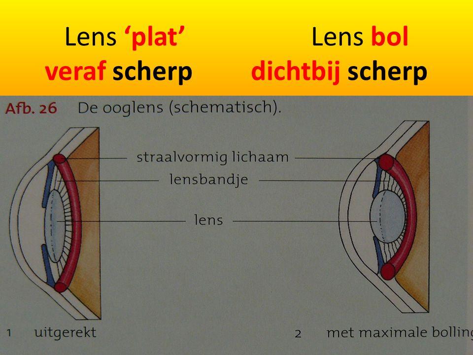 Lens 'plat' Lens bol veraf scherp dichtbij scherp