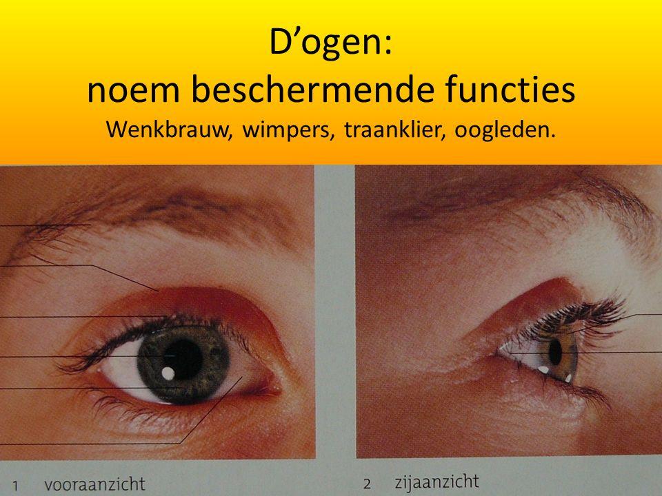 D'ogen: noem beschermende functies Wenkbrauw, wimpers, traanklier, oogleden.
