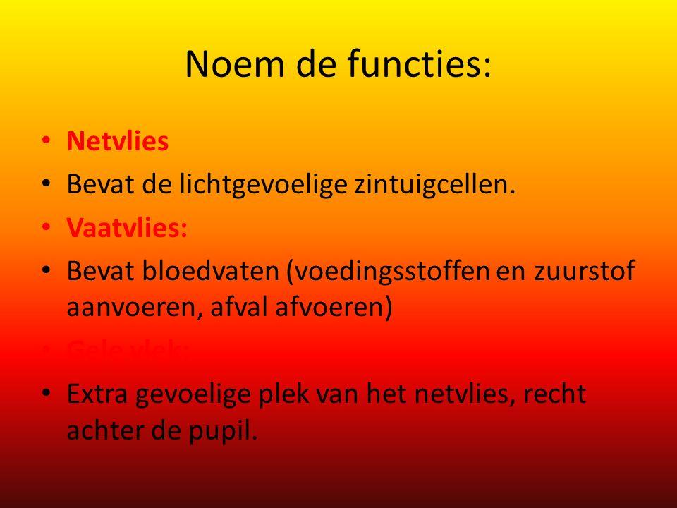 Noem de functies: Netvlies Bevat de lichtgevoelige zintuigcellen.