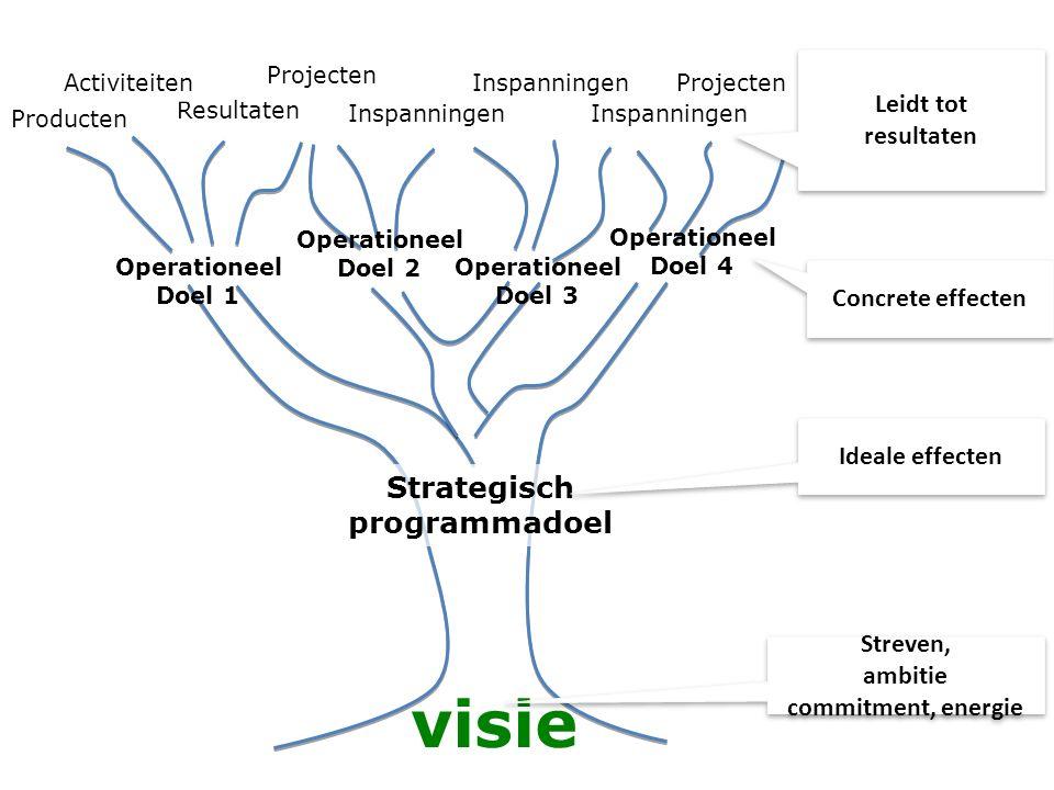 visie Strategisch programmadoel Leidt tot resultaten Concrete effecten