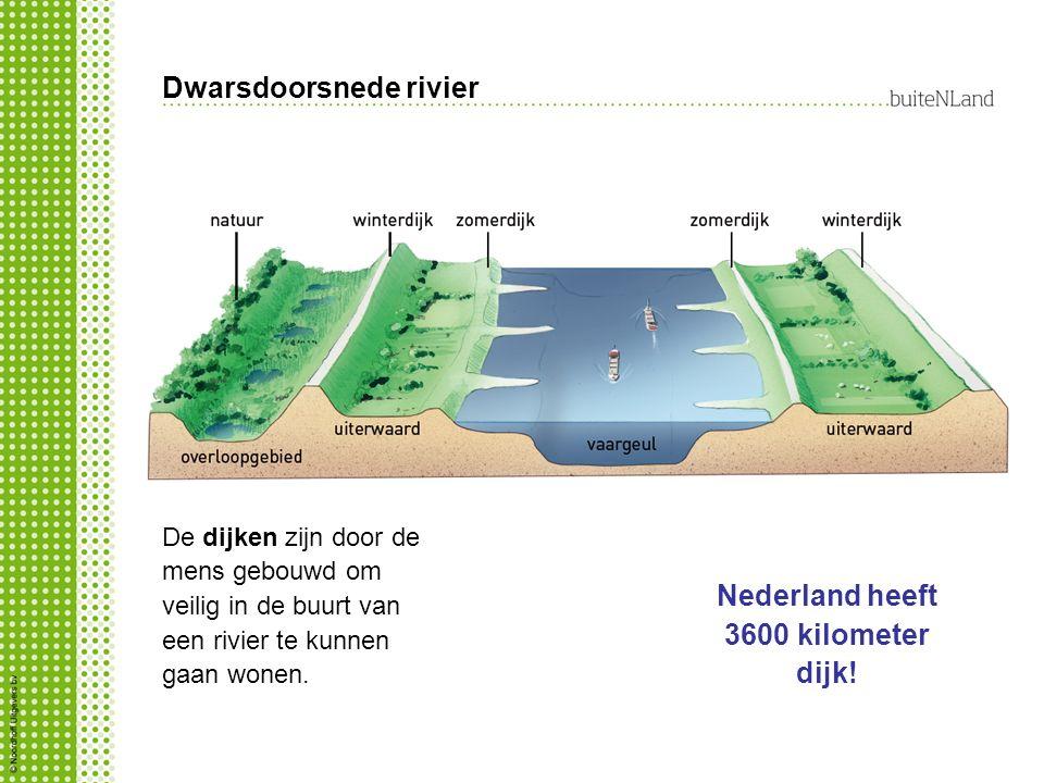 Dwarsdoorsnede rivier