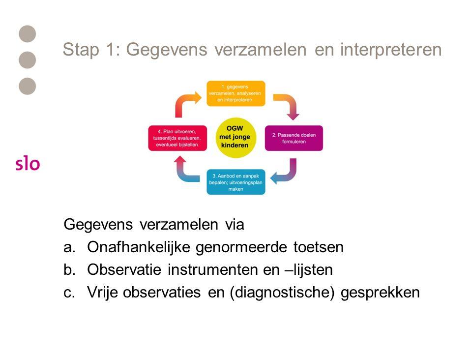 Stap 1: Gegevens verzamelen en interpreteren