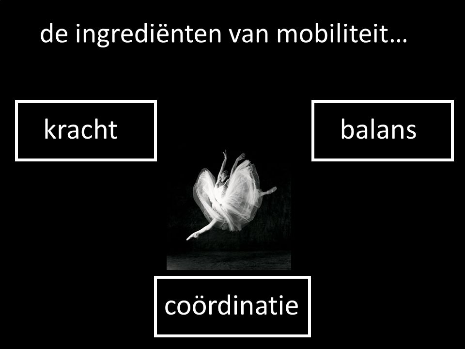 de ingrediënten van mobiliteit…