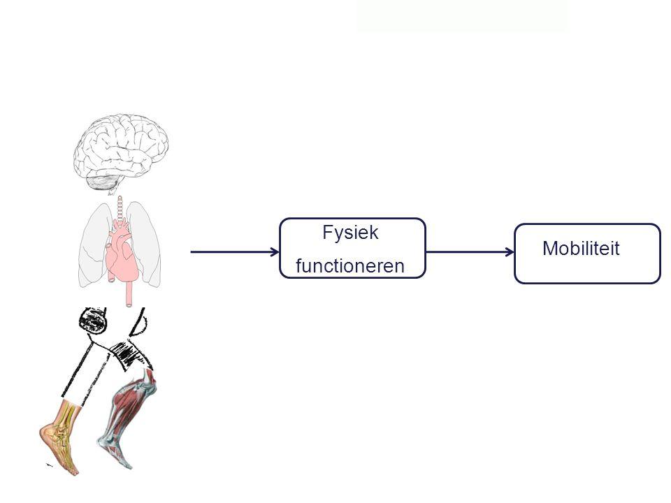 Fysiek functioneren Mobiliteit 30
