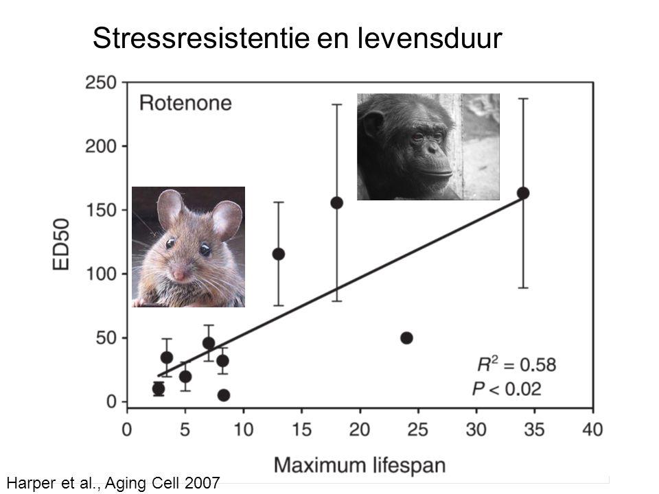 Stressresistentie en levensduur