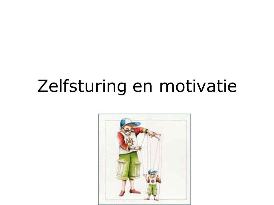Zelfsturing en motivatie