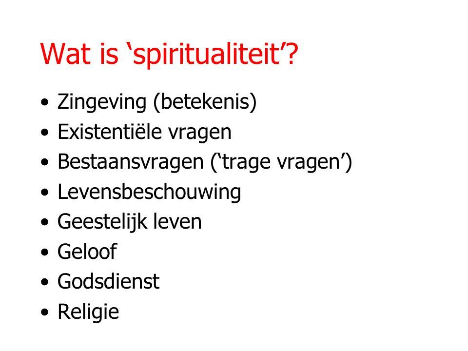 Wat is 'spiritualiteit'